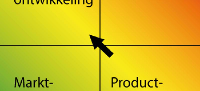 Ansoff Matrix- Risico's | Marketingmodellen